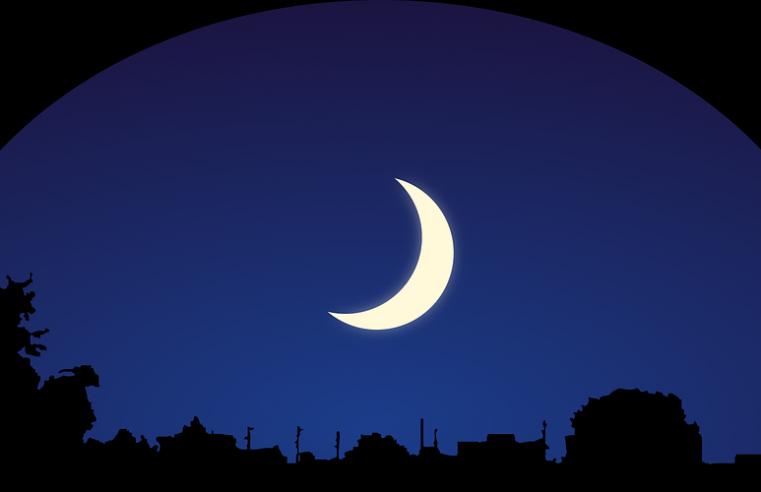 Обзор книги «Зачем мы спим: Новая наука о сне и сновидениях» (автор: Мэттью Уолкер)