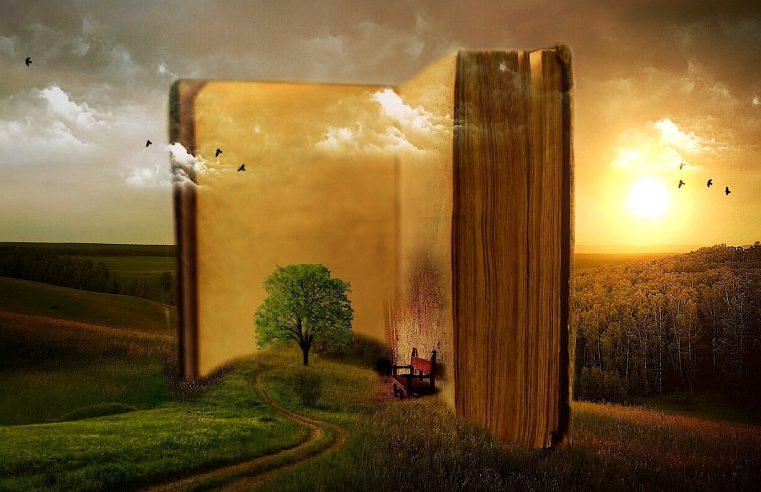 Цитаты о чтении, литературе и писательстве из книги Орхана Памука «Другие цвета»